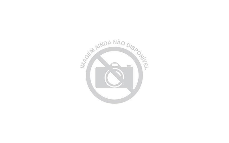 Sementes de Amendoim Bravo (Pterogyne nitens Tul.)