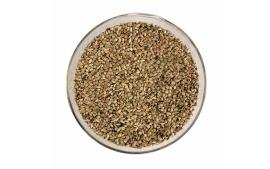 Sementes de Grama Batatais (Paspalum notatum)