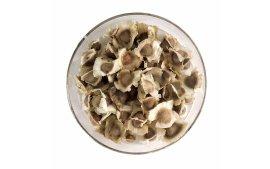 Sementes de Moringa Oleifera(Moringa oleifera)