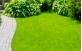 Jardinagem elaborado com grama batatais.